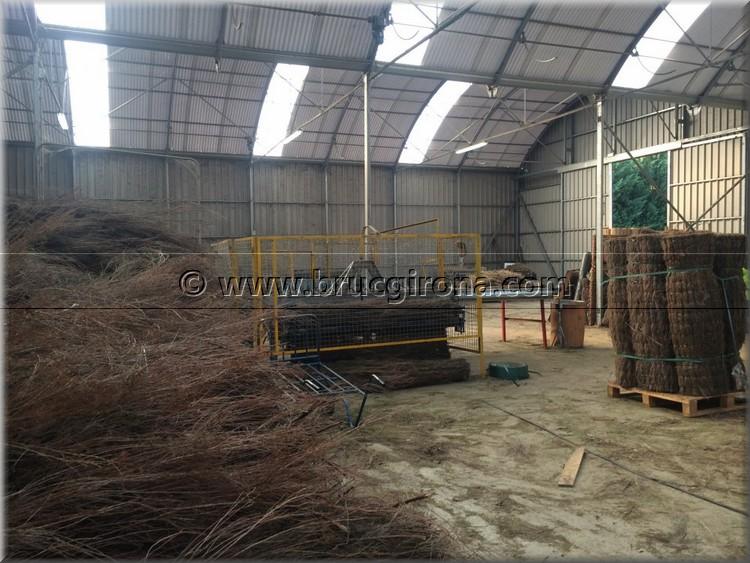 Fabricantes de brezo natural
